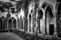 Ivy around the Cloisters at Convento di San Fransesco